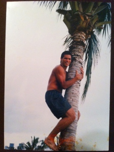My favorite coconut climbing a coconut tree.  Doesn't get much better than that :)
