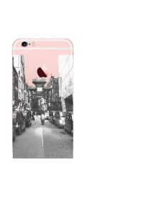 iPhone 6S Chinatown Fresco