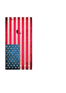 iPhone 6S US Flag Fresco